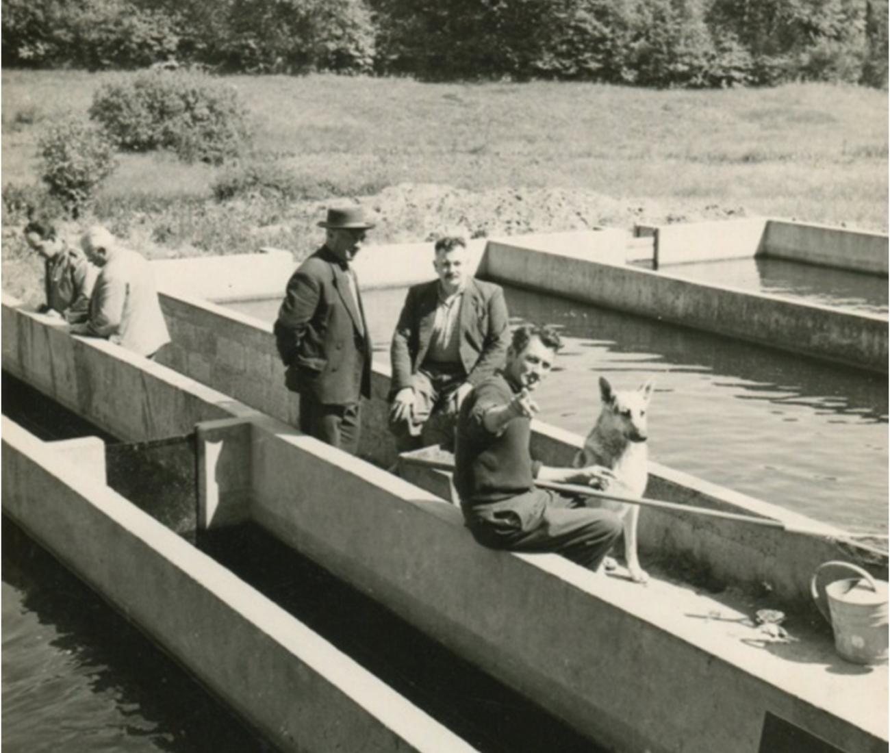 M. Pierre Chevance qui a créé la pisciculture de Kerléo en 1956, M. Jean Ollivier et la fédération de pêche de Carhaix